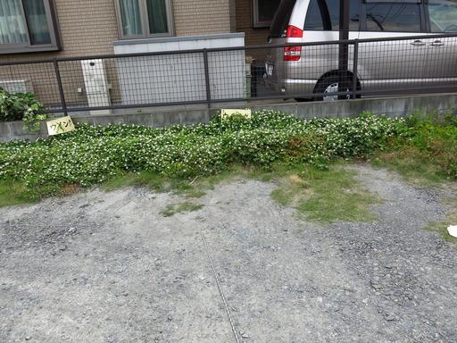 さいたま市 北区 ウイング 駐車場