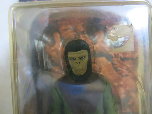 コーネリアス 猿 似てる