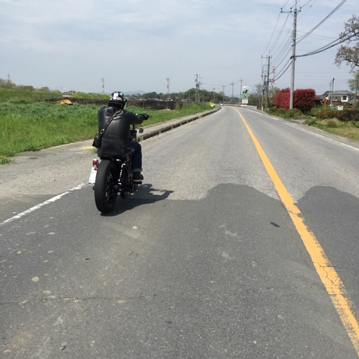 バイク 埼玉 忍城 城 ツーリング 佐野ラーメン 万里 渡良瀬遊水地