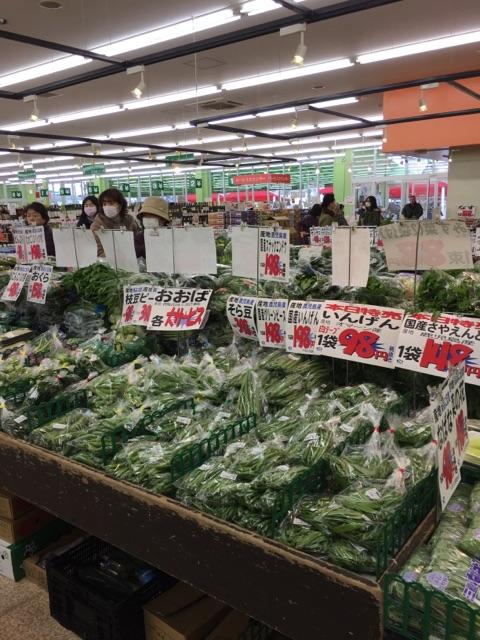 ヤオヒロ 上尾 安い 野菜