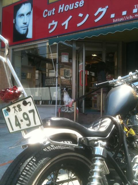 渡良瀬遊水地 バイク ダート BRATSTYLE SR DIRT